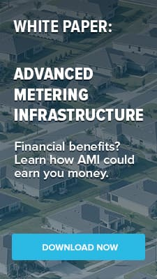 Download the AMI White Paper